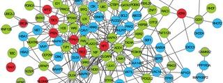 autisme_la_piste_genetique_se_precise.rogne